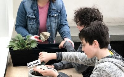 Gardening with Kids: Fun Ideas for All Ages!
